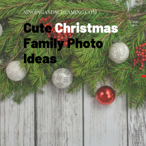 christmas photos ideas, red and silver ornaments on grey wood panel